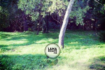 locali bari-lamaricante